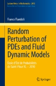 Random Perturbation of PDEs and Fluid Dynamic Models